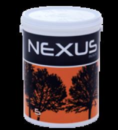 Nexus Vector